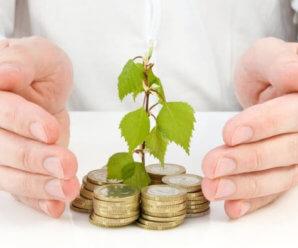 Инвестиционные риски управления капиталом