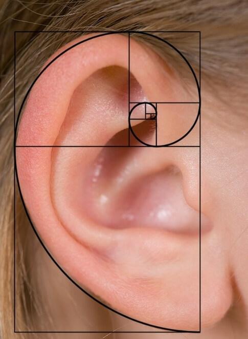Фибоначчи наложенный на ухо